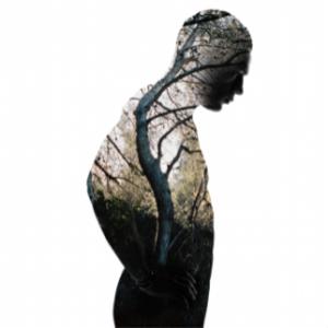 Erica Simone & Jaci Berkopec, Human Nature 2015